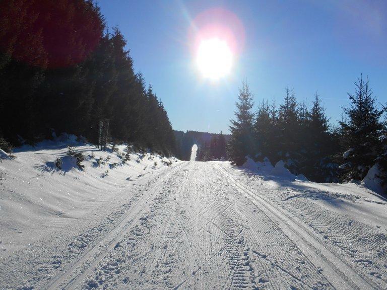 bucinska cesta jeleni horni blatna pernink krusne hory bezky