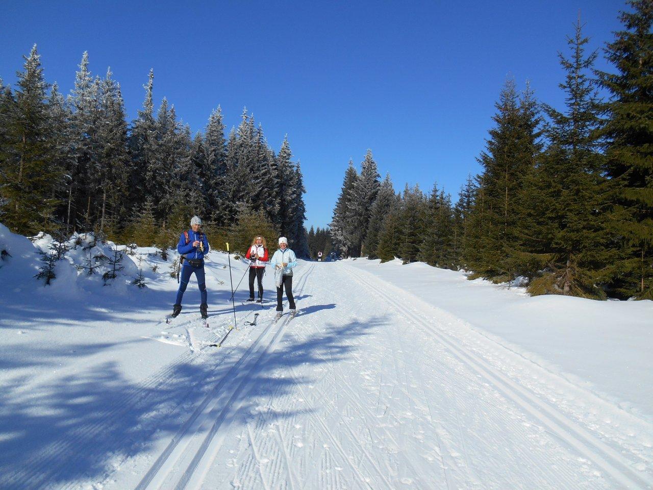 jelení-nové hamry-běžecké lyžařské trasy