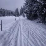 Trasa z Chaloupek na Rolavu