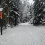 Vjezd na Chaloupeckou cestu u Chaloupeckého parkoviště