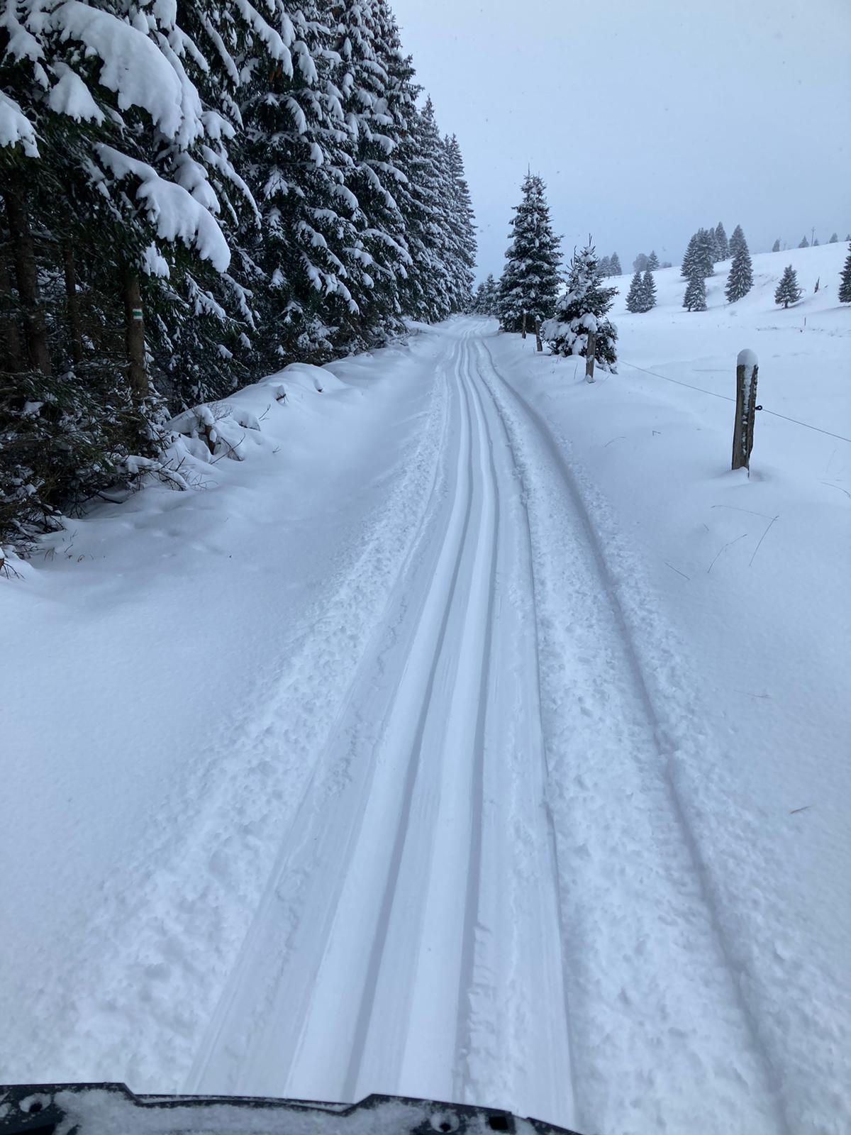 Rolava - Stará Carlsfeldská cesta 8.1.2021